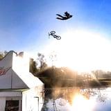 Insane Stunts.jpg