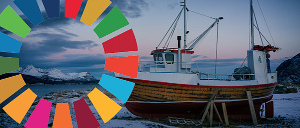 SME sustainability reporting on the sdgs worldfavro platform