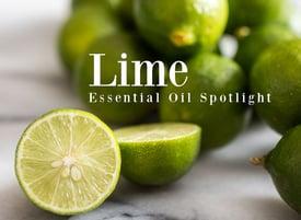 Lime-Essential-OIl-Spotlight