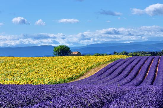 bigstock-Provence-Rural-Landscape-94680206.jpg