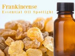 frankincense-essential-oil-spotlight.jpg