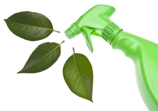 green clean2