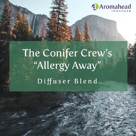 Promo Images-May-Youtube Videos-Title-The Conifers Crews Allergy Away Diffuser Blend-1200x1200-V1