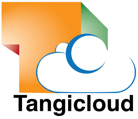 Tangicloud builds extensions for Microsoft Dynamics NAV