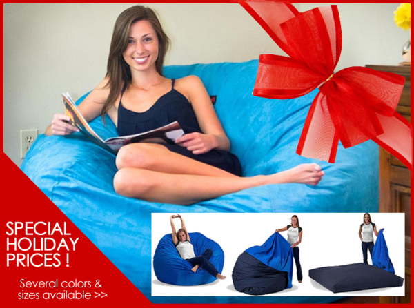 bean bag bed starting at $49