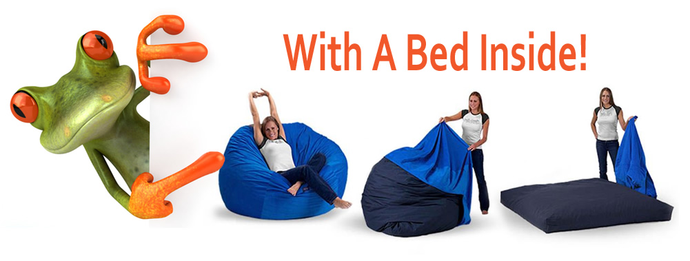Bean Bag To Bed