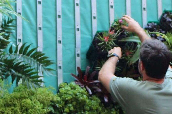 Green wall installation tutorial