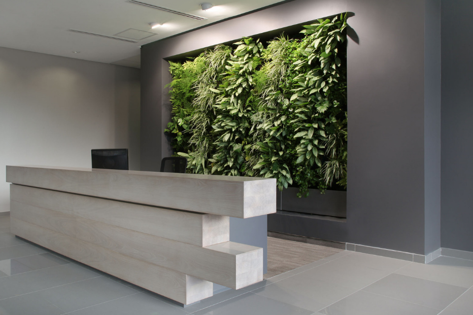 Does your office have the right space for a green wall? [CHECKLIST]