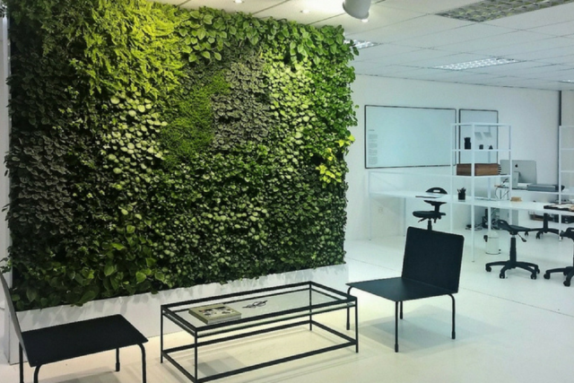 Budget savvy: a green wall for your office redesign [UPDATE]