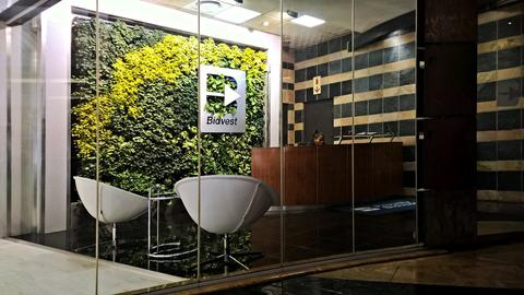 Why proper lighting is critical for indoor decorative green walls