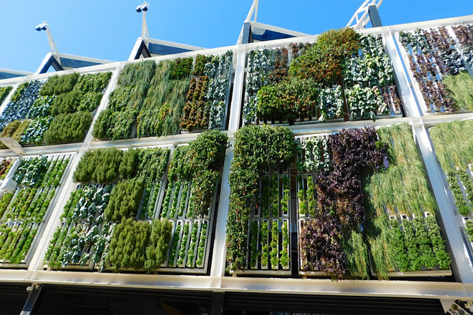 Checklist: does your office need a green wall?