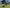 Robotic Lawn Mowers are at Super-Sod Stores Across the Southeast - featured image