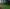 October Tall Fescue Lawn Care Tips - featured image