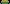 Leisure Time Zoysia