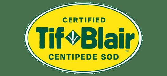 TifBlair Centipede Ecograss