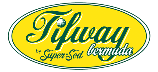 Tifway Bermuda Sod