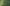 That Apple Fell Straight Down: Advice to Restore an Overgrown Lawn - featured image