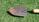 How To Conduct a Soil Test for Your Lawn [Video] - featured image