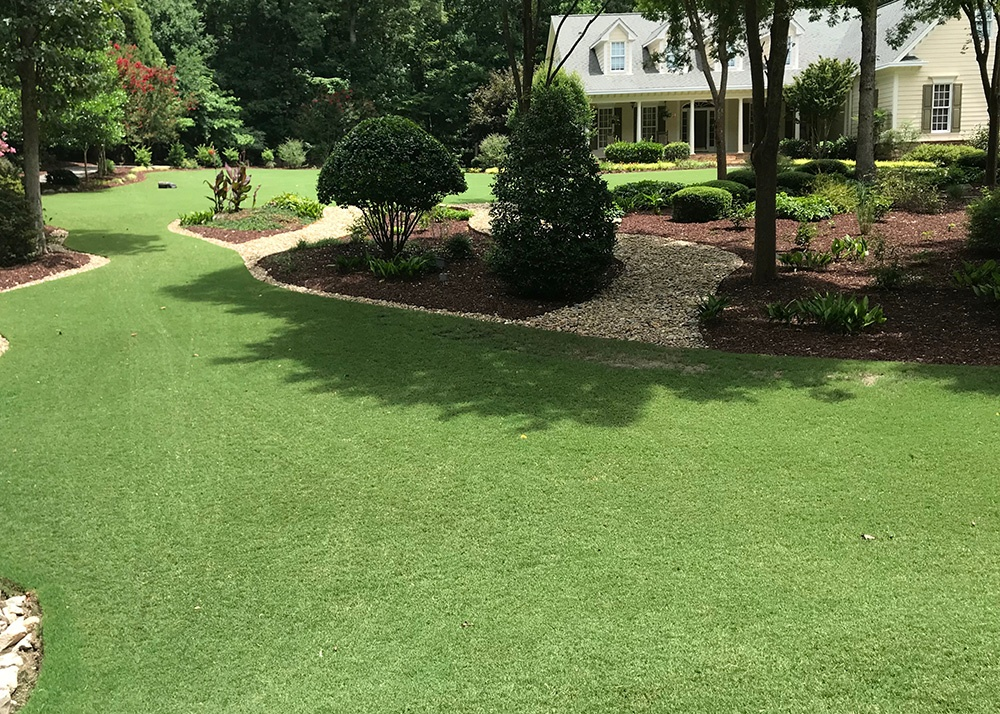 August Lawn Tips - featured image