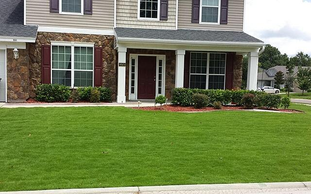 EMERALD ZOYSIA LAWN MAINTENANCE - featured image