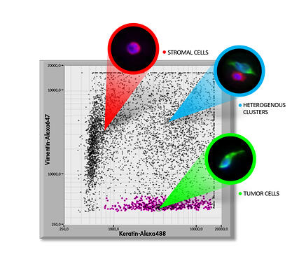 Silicon_Biosystems_ScatterPlot_Image_GEN_Tutorial