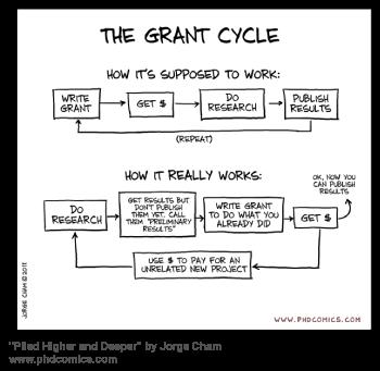 Grant writing process steps