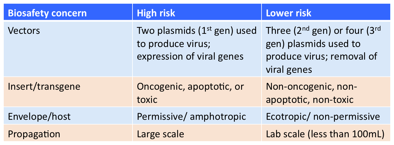 Your Lentiviral Plasmid Faqs Answered