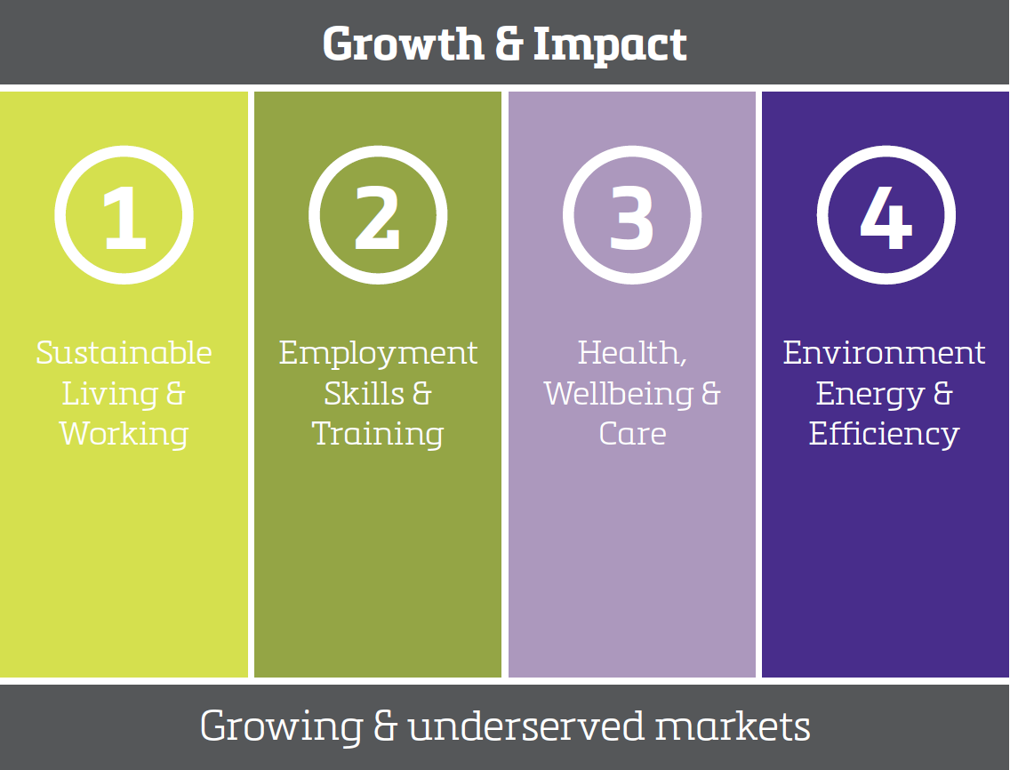 investing for growth and impact graphic.png