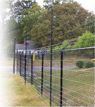 MILWAUKEE DOG FENCE | MADISON ELECTRIC FENCE | WAUKESHA