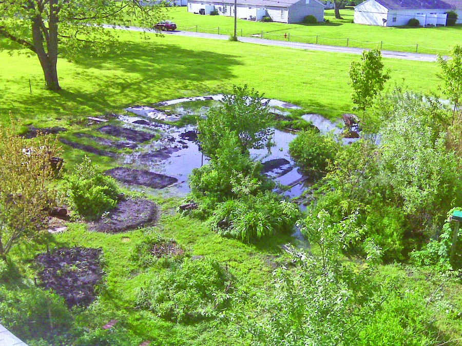 Landscaping in Soggy Spots on Landscaping Ideas For Wet Backyard id=92445