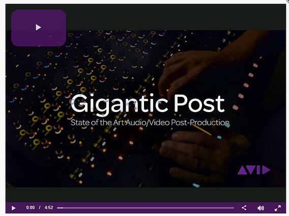VDS-AvidAudio