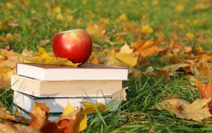 Apple_on_Books_in_Grass_Fruit.jpg