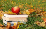 Apple_on_Books_in_Grass_Fruit.jpg