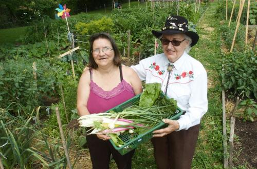 Blog_GrowingCommunityEngagement_garden_friends.jpg