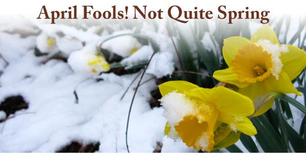 April-2019-Curious-Nature-Spring-1
