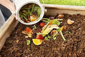 Backyard Compost Turn Browns and Greens into Gold