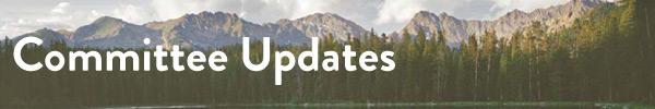 Committee-Updates-3