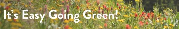 Easy-Going-Green-1