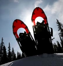 Free Guided Family Snowshoe Tours of Vail Colorado