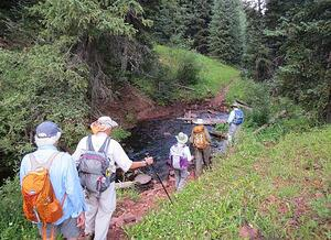 hike of the week Squaw Creek Vail