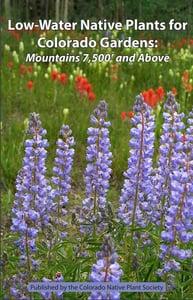 Low-Water-Native-Plants-Colorado