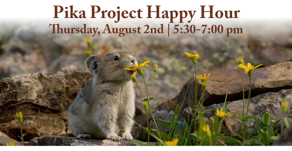 Pika-Project-Happy-Hour.png