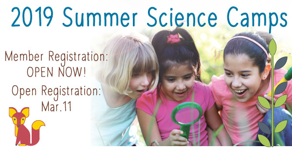 Summer-Camps-Member-Open-Dates