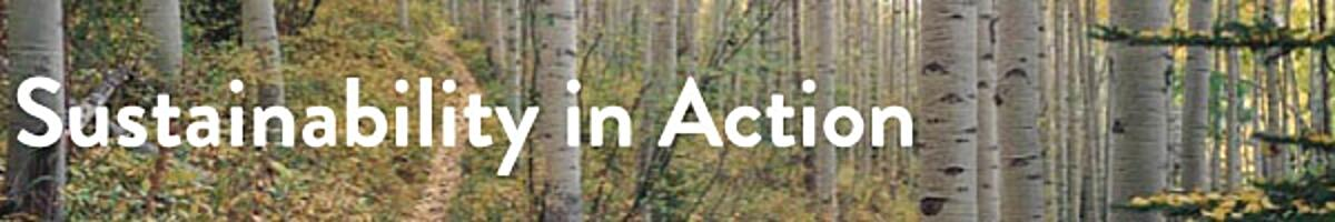 Sustainability-in-Action