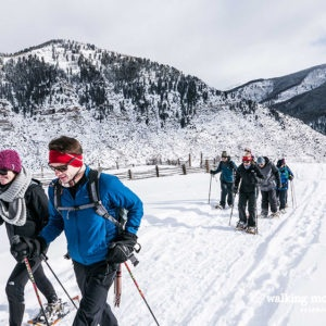 Vail Snowshoe Tours with Walking Mountains