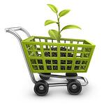 Think Local First: How Shopping Relates to Sustainability