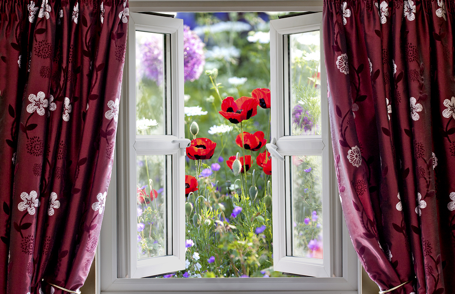 bigstock-Open-Window-View-Onto-Wild-Flo-40060990.jpg