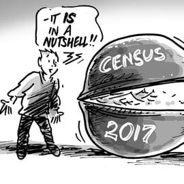 Census in a nutshell