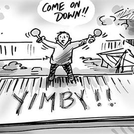 YIMBYs