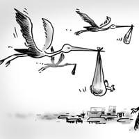storks-pic